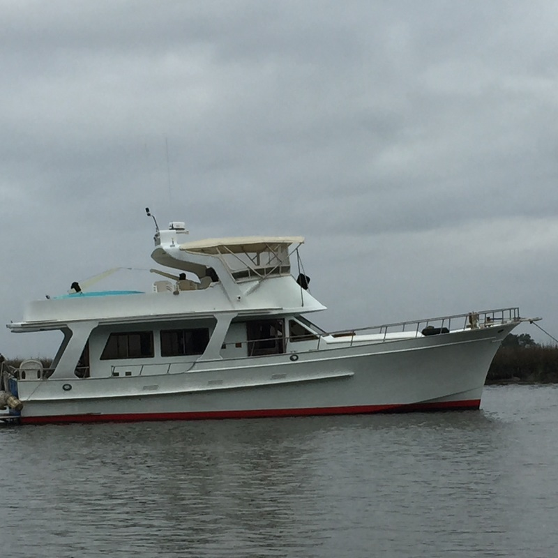 Specialty trips tybee island charters for Savannah fishing charters